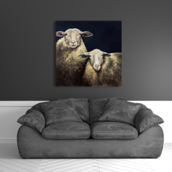 Canvas 36 x 36 - Two sheep blue background