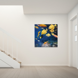 Canvas 36 x 36 - Fish under the sea