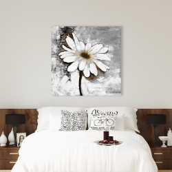 Canvas 36 x 36 - Abstract daisy