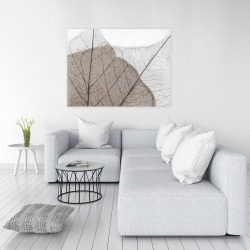 Canvas 36 x 48 - Translucent dried leaves