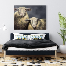Canvas 36 x 48 - Two sheeps
