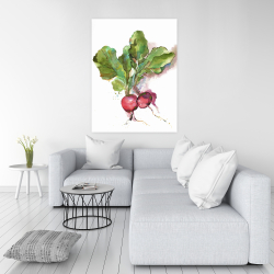 Canvas 36 x 48 - Watercolor radish