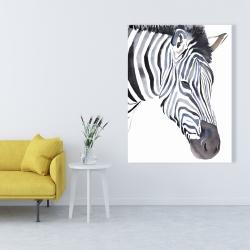Canvas 36 x 48 - Zebra