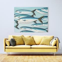 Canvas 36 x 48 - Small fish of caesio caerulaurea