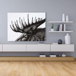 Canvas 36 x 48 - Moose plume