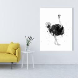 Canvas 36 x 48 - Proud ostrich