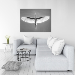 Canvas 36 x 48 - Great blue heron in flight