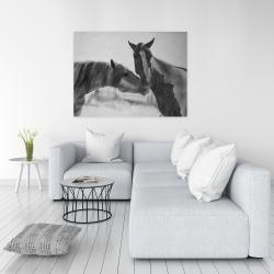 Canvas 36 x 48 - Horses lover