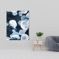 Canvas 36 x 48 - Jellyfishs