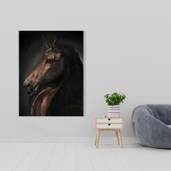 Canvas 36 x 48 - Spirit the horse