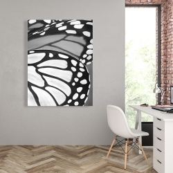 Canvas 36 x 48 - Butterfly wings closeup