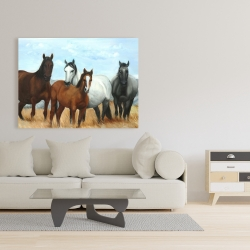 Canvas 36 x 48 - Horses in the meadow by the sun