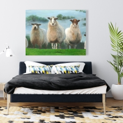 Canvas 36 x 48 - Flock of sheep