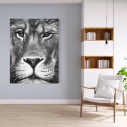 Canvas 36 x 48 - Lion portrait