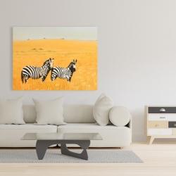 Canvas 36 x 48 - Herd of zebra