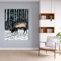 Canvas 36 x 48 - Caribou in the winter forest