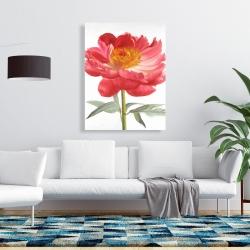 Canvas 36 x 48 - Pink peony