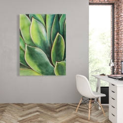 Canvas 36 x 48 - Watercolor agave plant