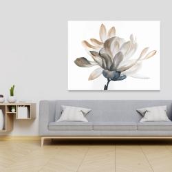 Canvas 36 x 48 - Softness