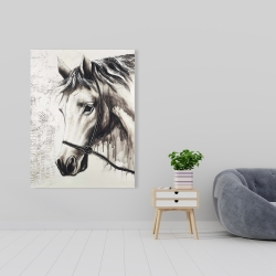 Canvas 36 x 48 - Alpha the white horse