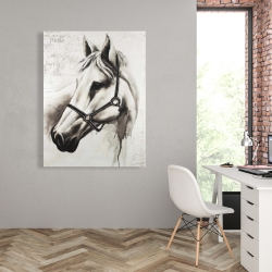 Canvas 36 x 48 - Flicka the white horse