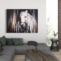 Canvas 36 x 48 - White horse in the dark
