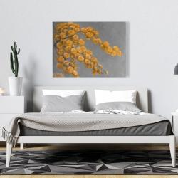 Canvas 36 x 48 - Golden wattle plant