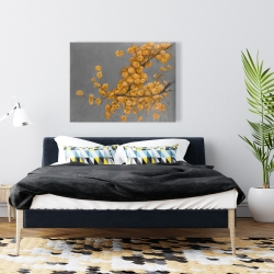 Canvas 36 x 48 - Golden wattle plant with pugg ball flowers
