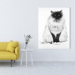 Canvas 36 x 48 - Blue eyes fluffy siamese cat