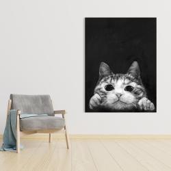 Canvas 36 x 48 - Curious cat