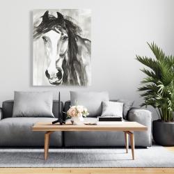 Canvas 36 x 48 - Beautiful wild horse