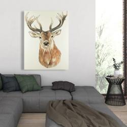 Canvas 36 x 48 - Front deer portrait