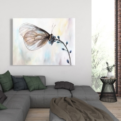 Canvas 36 x 48 - Butterfly on blue flowers