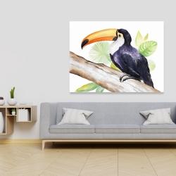Canvas 36 x 48 - Toucan perched