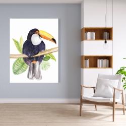 Canvas 36 x 48 - Toucan