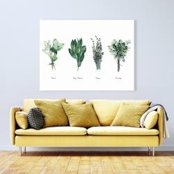 Canvas 36 x 48 - Fine herbs