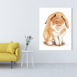 Canvas 36 x 48 - Lop-rabbit