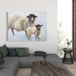 Canvas 36 x 48 - Sheep and its baby