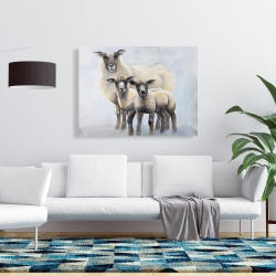 Canvas 36 x 48 - Sheep family