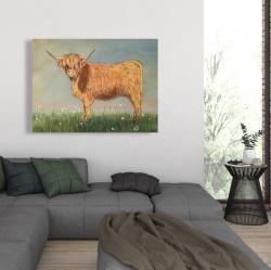 Canvas 36 x 48 - Daisy the highland cow
