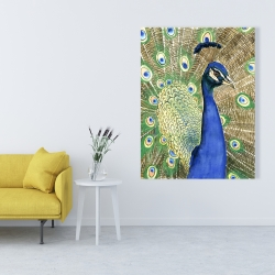 Canvas 36 x 48 - Peacock