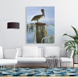 Canvas 36 x 48 - Pelican