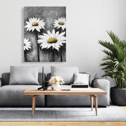 Canvas 36 x 48 - Daisies at sun