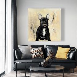 Canvas 48 x 48 - French bulldog