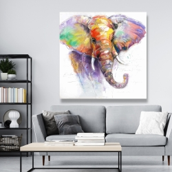 Canvas 48 x 48 - Beautiful and colorful elephant