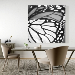 Canvas 48 x 48 - Butterfly wings closeup