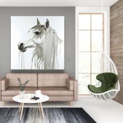 Canvas 48 x 48 - Beautiful white horse