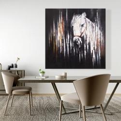 Canvas 48 x 48 - White horse in the dark