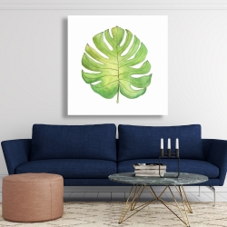 Canvas 48 x 48 - Tropical leaf