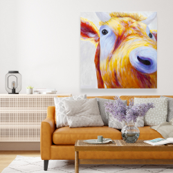 Canvas 48 x 48 - Closeup of a colorful country cow